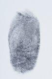 Makro av det svarta fingeravtrycket Fotografering för Bildbyråer