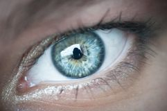 Makro av ett blått öga av en flicka med fotografreflexion arkivbild