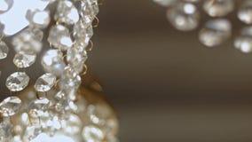 Makro av hängande exponeringsglas stock video