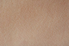 Makro av mänsklig hud för textur arkivfoton