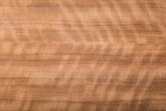 Makro av Wood fanér Arkivbilder