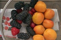 Makro- colander z czerwonymi malinkami, czarnymi czernicami i pomarańczowymi morelami, obraz royalty free