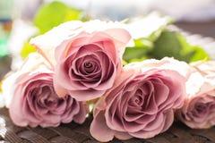 Makro- delikatny świeży menchii róży kwiat Ślubna świeżych kwiatów dekoracja obrazy stock
