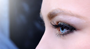 Makro des blauen Auges Stockfotos