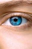 Makro des blauen Auges einer Frau Stockbild