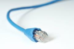 Makro des Internet-Seilzuges stockbilder