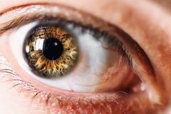 Makro- des menschlichen Auges, selektives Fokus-, ängstliches oder überraschtesdes flüchtigen blickes Konzept Stockfotografie