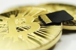 Makro detalj av det skinande guld- Bitcoin myntet och microSDminneskortet arkivbild