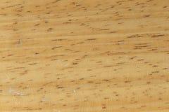 Makro- drewniany tekstury tło zdjęcie stock