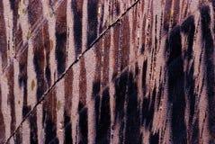 Makro- drewniany wyplata Fotografia Royalty Free
