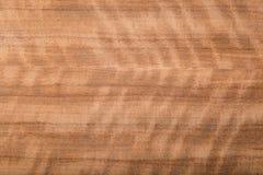 Makro- drewno fornir Obrazy Stock