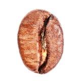 Makro för Arabicakaffeböna som isoleras på vit bakgrund Kick Res arkivfoto