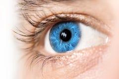 Makro för blått öga royaltyfri foto