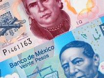Makro för closeup för sedel för pesos för Mexico valuta 20 och 50, mexikan Royaltyfri Bild