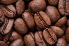 Makro för kaffebönor som bakgrund arkivbild