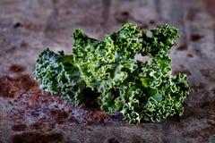Makro för lockig grönkål Arkivfoto