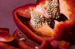 Makro för röd peppar Arkivfoton