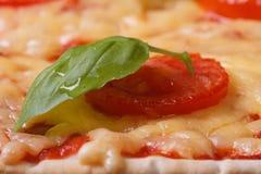 Makro för texturmargaritapizza. horisontal Arkivfoto
