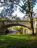 Makro- fotografia z dekoracyjnym jesień krajobrazu tłem miastowy przewiezionego systemu infrastruktury otwarty metro blisko rzeki Fotografia Royalty Free