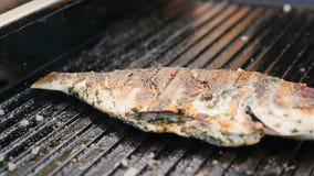 Makro-Fried Grill Fish mit der goldenen Kruste besprüht mit Gewürz stock footage