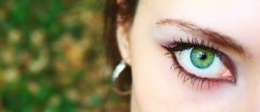 Makro grünes Auge des schönen Mädchens lizenzfreies stockfoto