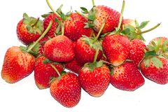 Makro- Grupowa Świeża Czerwona truskawka na białym tle Zdjęcie Stock