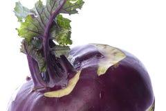 makro kalarep purpurowy Obraz Stock
