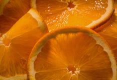 Makro- karmowy tło półprzezroczyste soczyste pokrojone pomarańcze Zdjęcia Royalty Free