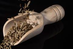 Makro- kolekcja, aromatyczny wysuszony przyprawowy kminu zakończenie up obrazy stock