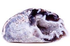 Makro- kopalina kamienia agata pączek na białym tle Fotografia Royalty Free