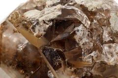 Makro- kopalina kamienia dymiąca kwarc na białym tle obrazy stock