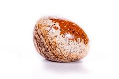 Makro- kopaliny skały jaspisu krajobraz piaskowaty na białym tle Zdjęcie Royalty Free