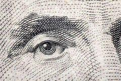 Makro Lincoln Eye Arkivfoto