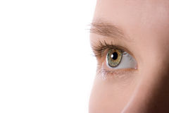 Makro menschliches Auge lizenzfreie stockfotos