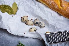 Makro- obrazek lunchów składniki na dowodu papieru tle Francuski baguette, metalu grater, przepiórek jajka i zatoka, Obrazy Stock