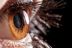 Makro- oko zdjęcia royalty free