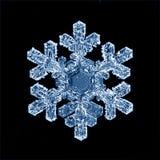Makro- płatków śniegu lodowych kryształów teraźniejszy naturalny Zdjęcia Stock