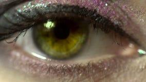 Makro- piękna żeński oko z ładnym uzupełniał kobieta z pięknym uzupełniał patrzejący kamery zakończenie up w studiu zbiory wideo