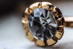 Makro- pierścionek Obraz Stock