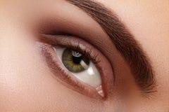 Makro schönes weibliches Auge der Nahaufnahme mit perfekten Formaugenbrauen Säubern Sie Haut, natürliches rauchiges Make-up der M Stockfotografie