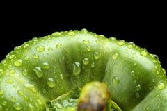 Makro schnitt Schuss des grünen Hintergrundes des grünen Pfeffers mit Wassertropfen Stockfotos