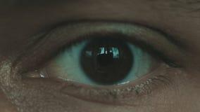 Makro som är nära upp av ögat arkivfilmer