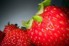 Makro som skjutas av den röda saftiga jordgubben på svart bakgrund Söt skördad bärbakgrund, sund matlivsstil arkivbilder