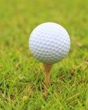 Makro som skjutas av golfboll på den wood utslagsplatsen Royaltyfri Bild