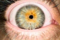 Makro som skjutas av kvinnaögonglob med den lilla eleven Stäng sig upp av kvinnlig ögonboll arkivbild