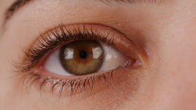 Makro- strzał brown kobiety oko zbiory wideo