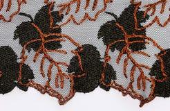 Makro- strzał pomarańcze koronkowa tekstura i czerwień Zdjęcie Royalty Free