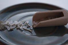 Makro- strzał rozmaryn doprawiał sól w drewnianym teaspoon na błękitnym talerzu Zdjęcie Stock
