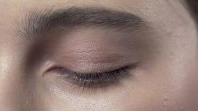 Makro- strzał stosować makeup kobiety powieka, wieczór makeup, smokey ono przygląda się, makeup w toku, zakończenie w górę makeup zdjęcie wideo