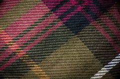 Makro- strzał szkockiej kraty szata Zdjęcie Royalty Free